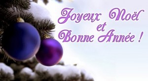 Photos De Joyeux Noel 2019.Joyeux Noel Et Bonne Annee La Vaillantela Vaillante